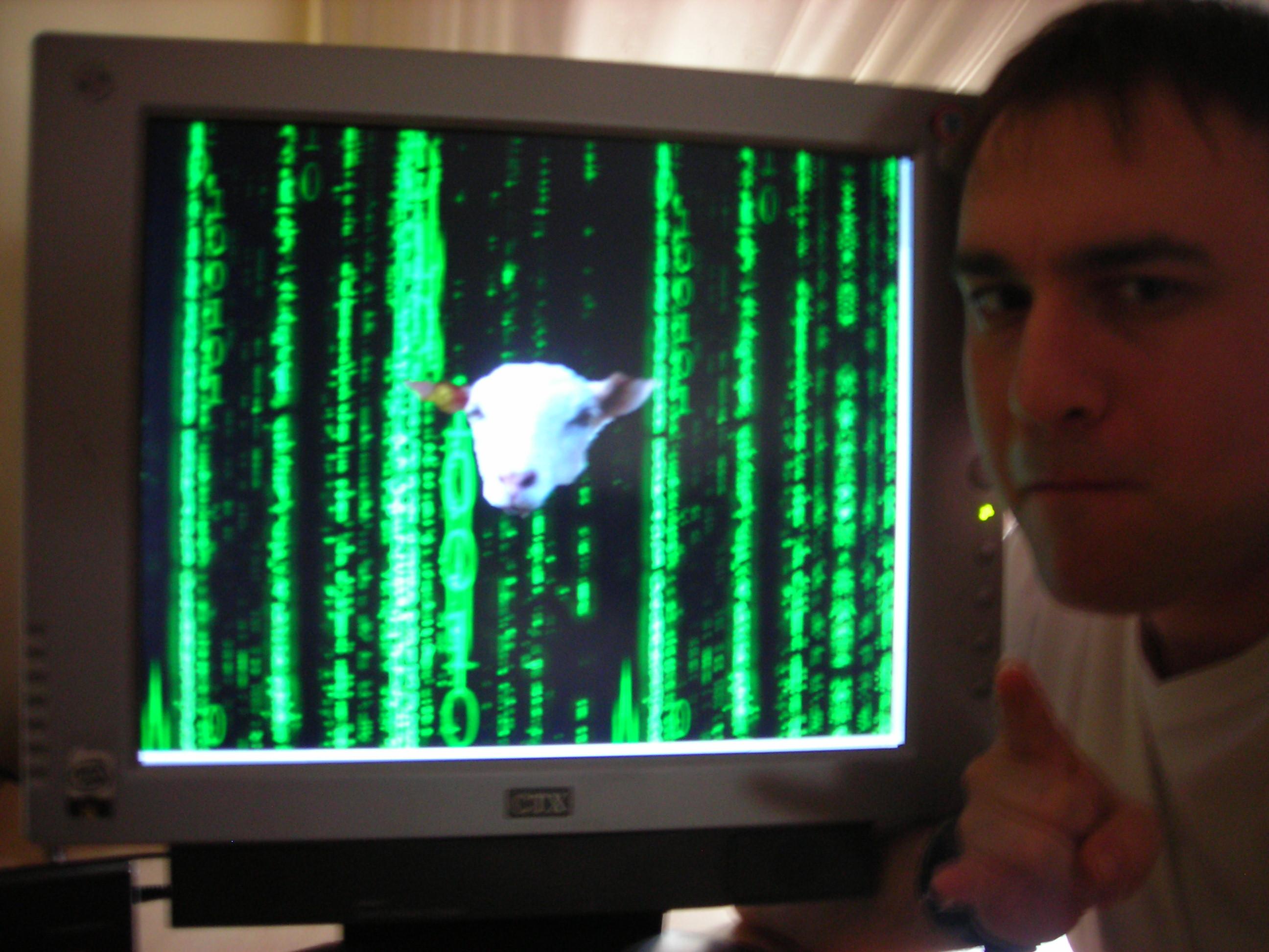 """Miau, Javier Barros, un amigo gallego de Orense, empresario y crítico del blog desde 2008 nos visita desde entonces dando la importante visión del digamos """" ... - yo2"""